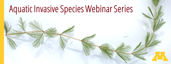 """Image of Eurasian watermilfoil on a white background with the text """"Aquatic Invasive Species Webinar Series"""""""