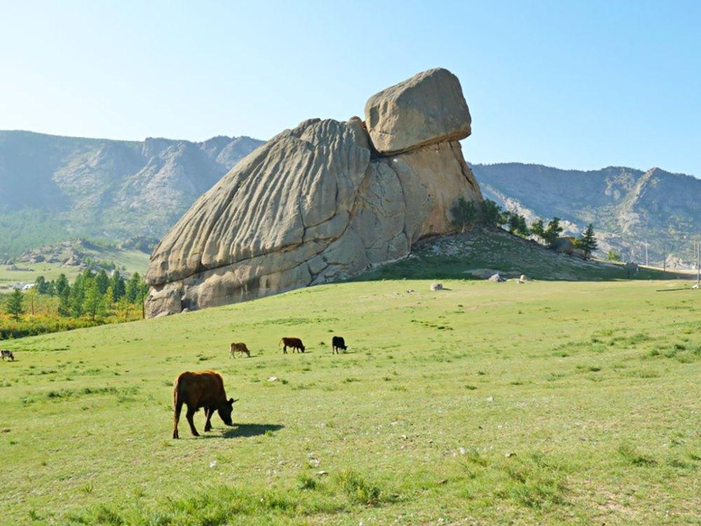 特勒吉國家公園著名地標之一「烏龜石」,可攀高俯瞰草原景致。