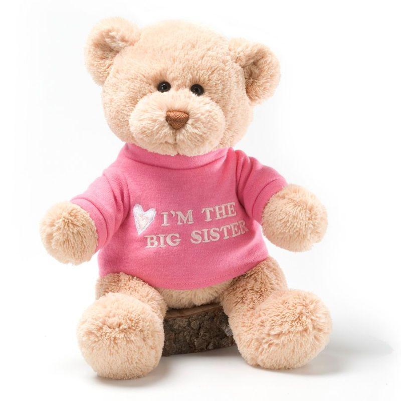 GUND Im The Big Sister Bear Pequannock Florist Bills