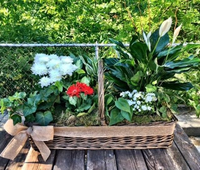 Large Euro Dish Garden Design Works Flowers Local Florist Rochester Mi
