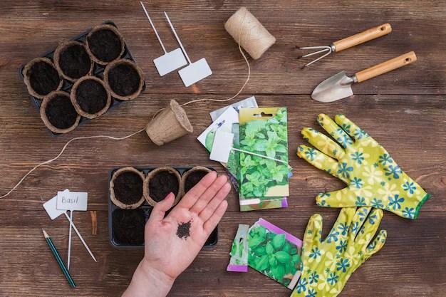 Etapas de siembra de semillas, preparación, herramientas de jardinería y utensilios, guantes coloridos, macetas orgánicas. Foto Premium