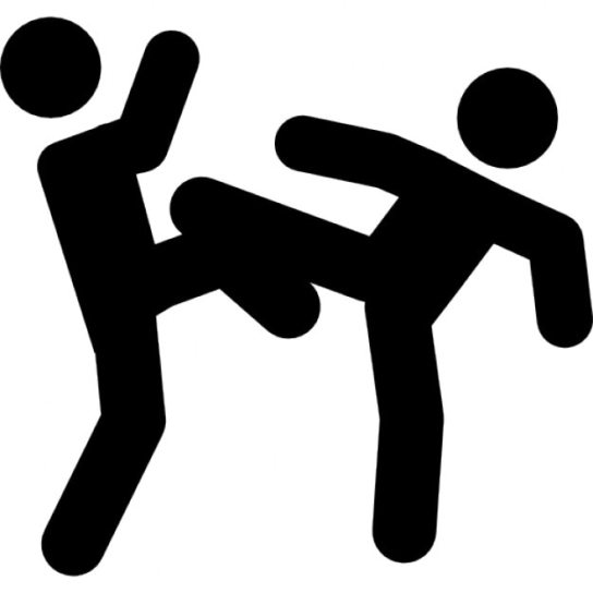 Image result for Image of Martial Arts