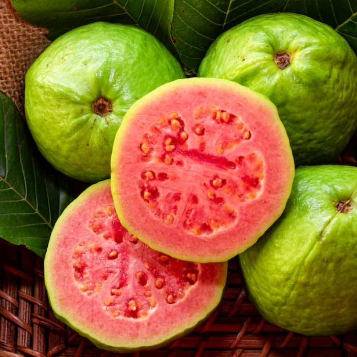 Top 20 Health Benefits of Guava Leaves (Part 1) pink guava
