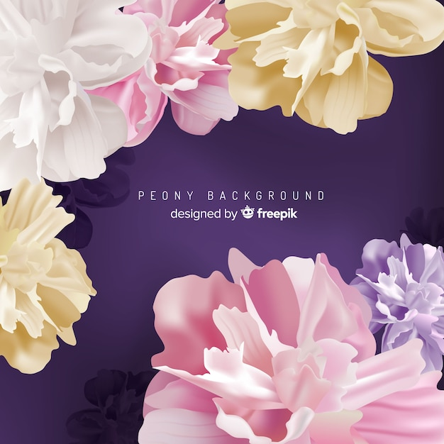 Detailed peony flowers background design Vector   Free Download Detailed peony flowers background design Free Vector