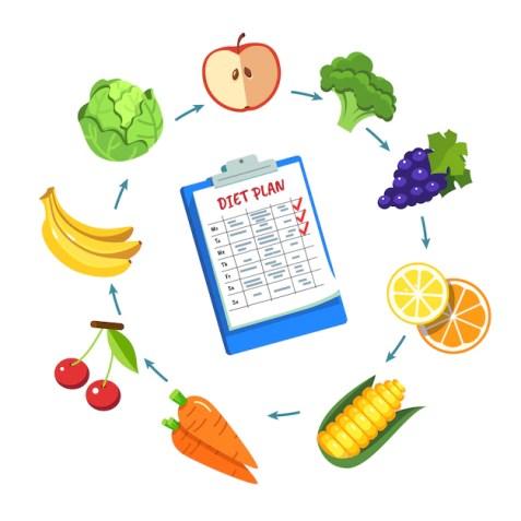 Diet plan schedule Free Vector