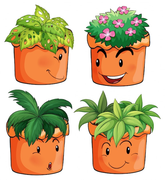 Premium Vector Flower Pots With Different Types Of Plants