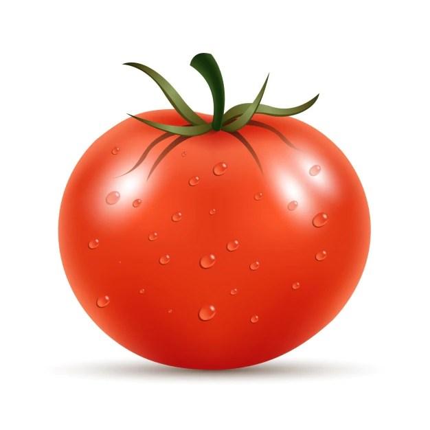 Fresh tomato Free Vector