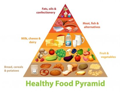 Free Vector | Healthy food pyramid chart