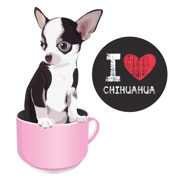 Download I love chihuahua | Premium Vector