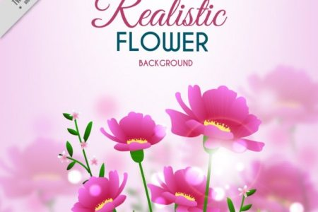 Beautiful flowers 2019 pink flower mounds view beautiful flowers pink flower mounds view various pictures of the most beautiful flowers can be found here find and download the prettiest flowers ornamental plants mightylinksfo