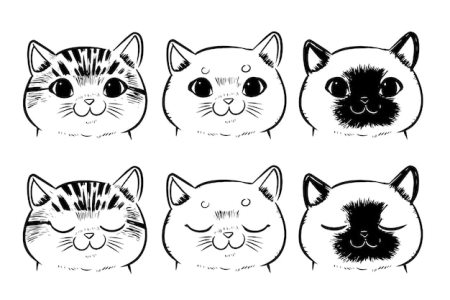Results for Dibujo De Cara De Gato Facil