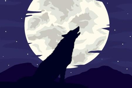 Results for Imagenes De Lobos Aullando A La Luna Para Colorear