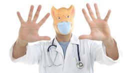 Afbeeldingsresultaat voor varkensgriep