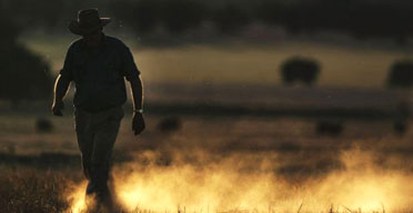 Australian farmer Wayne Dunford walks through his failed barley in Parkes, New South Wales