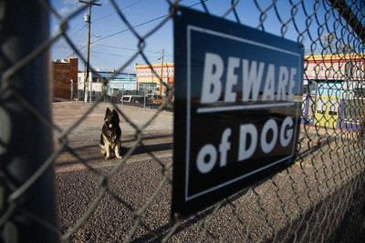 Awas Anjing, awas najis!