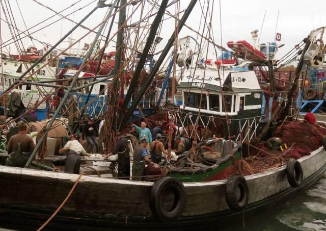 Un tratado de pesca ilegal