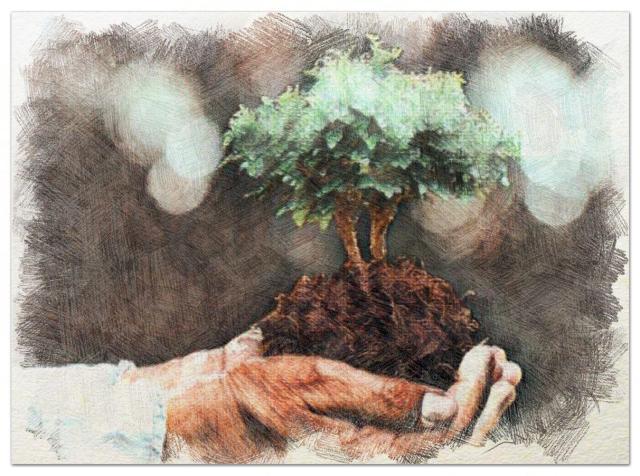La cultura como instrumento de transformación ambiental