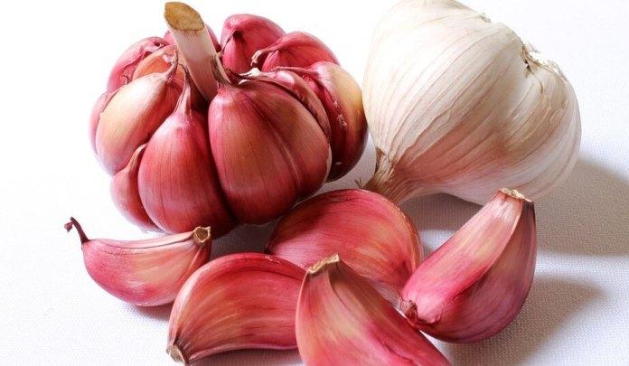 red_garlic garlic