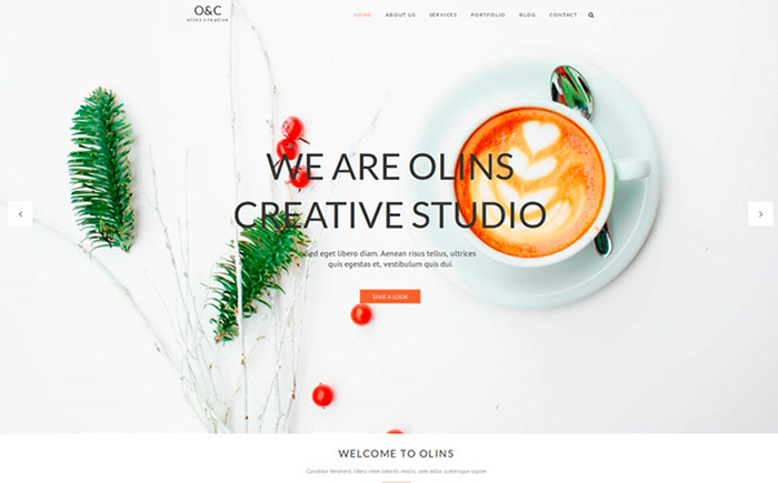 Olins Multi Niche WordPress Theme best premium WordPress themes for your blog or website.