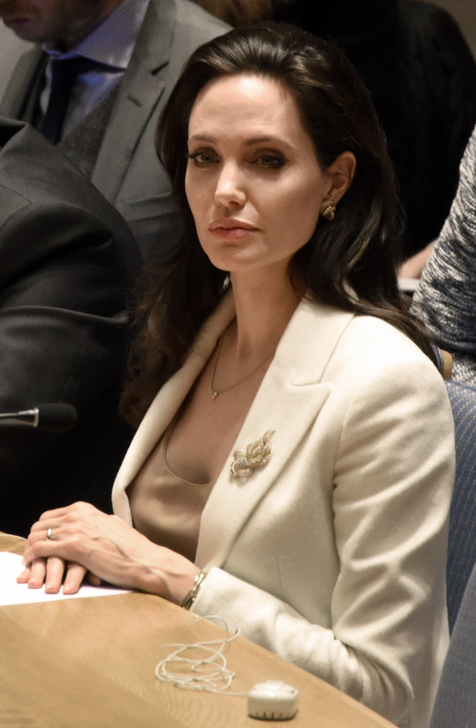 Angelina Jolie attends United Nations Security Council