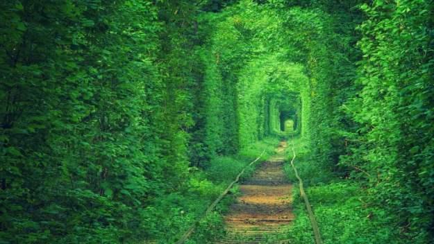 тоннель любви украина
