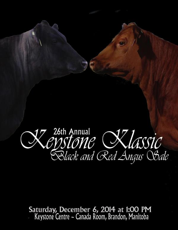 26th Annual Keystone Klassic Black & Red Angus Sale by ...