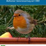 Seniorenzeitung Alt Na Und Nr 111 By Senioren Zeitung Issuu