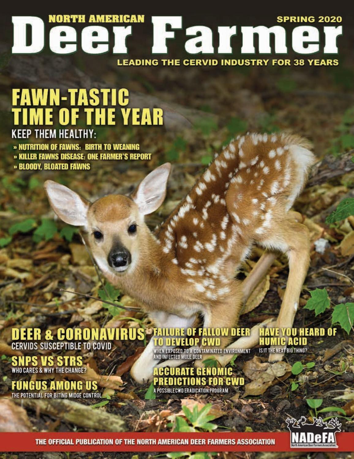 north american deer farmers magazine