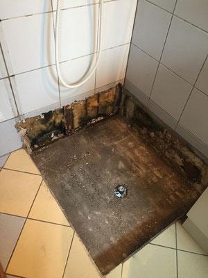 renover une petite salle d eau basique