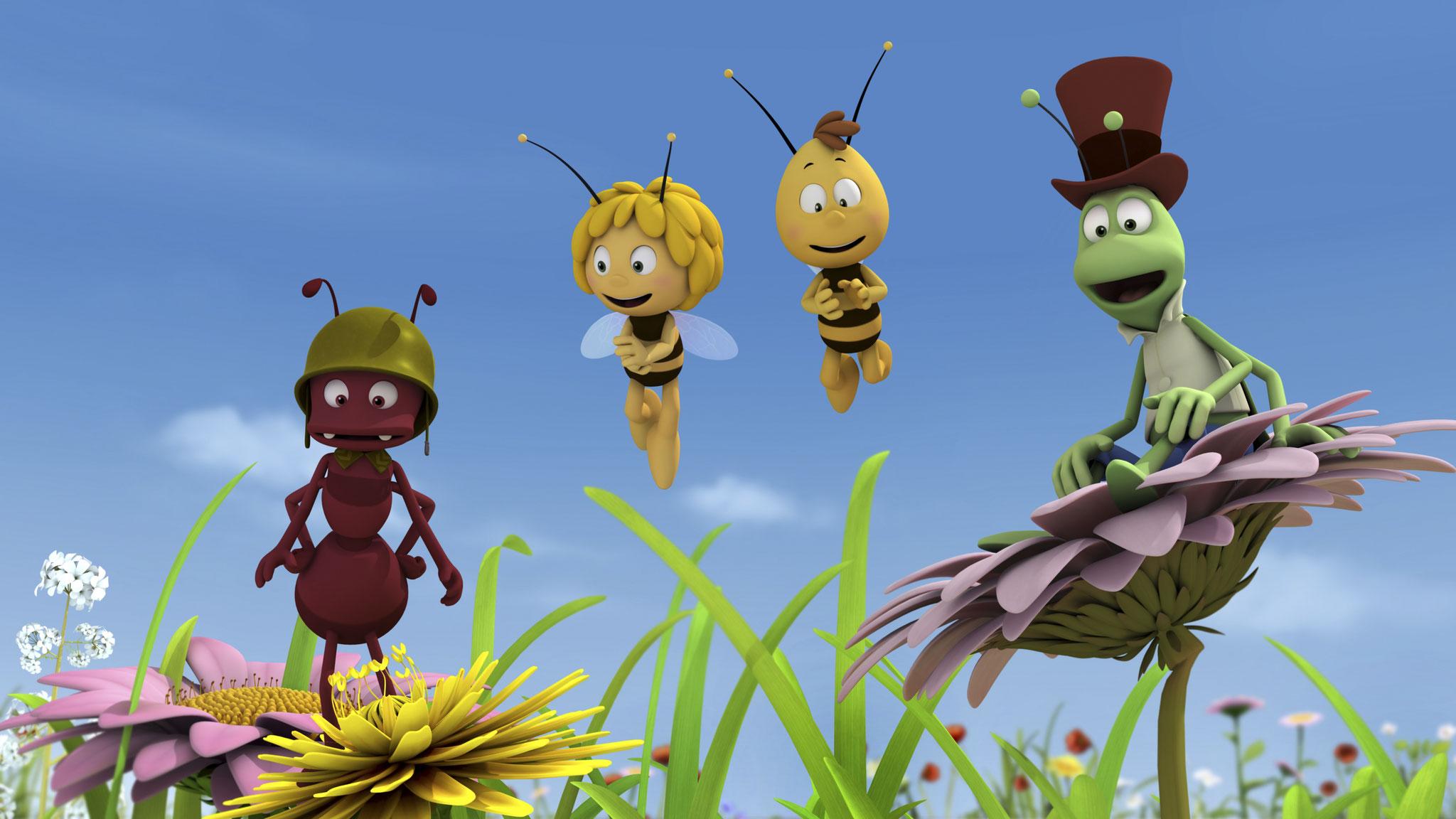 Maya The Bee Studio 100 Animation