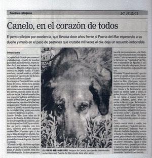Publicación Diario. Foto extraída de internet