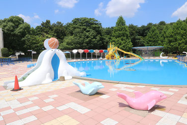 Saitama water park summer pools