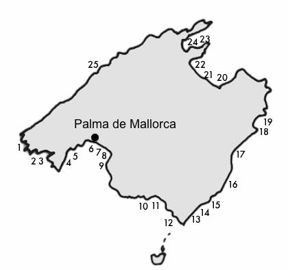 yachthafen ubersicht der mallorca