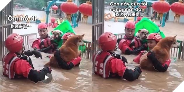 Khoảnh khắc anh lính cứu hỏa kéo chú chó đi bằng thùng rác khiến dân mạng cười bò. (Ảnh: Cắt từ clip).