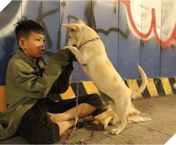 """Cậu bé ôm cún cưng co ro giữa đêm giao thừa trên phố Nguyễn Huệ:""""em ước có một mái nhà che nắng mưa"""