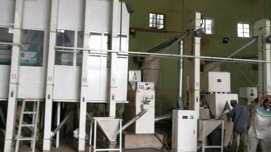 chine 40 50 tonnes jour prix