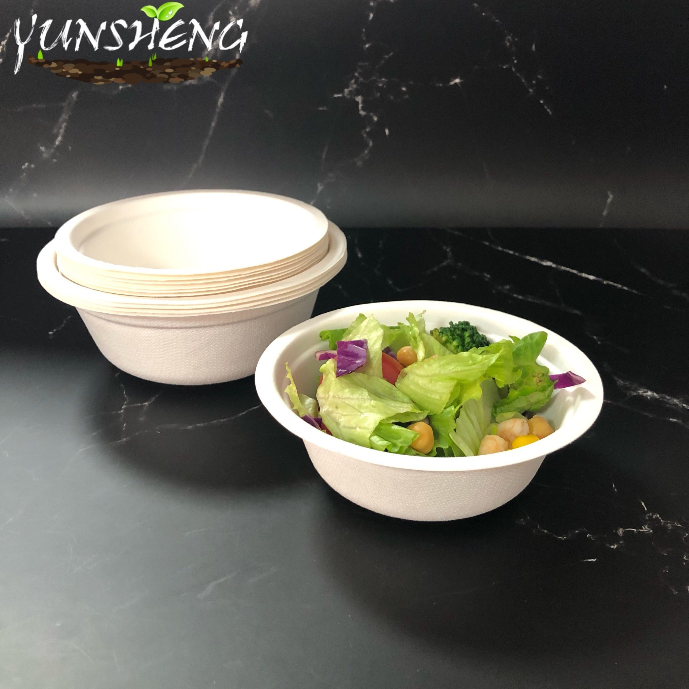 china biodegradable disposable bowls