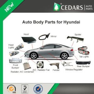 China Auto Body Parts and Accessories for Hyundai Accent  China Body Parts for Hyundai