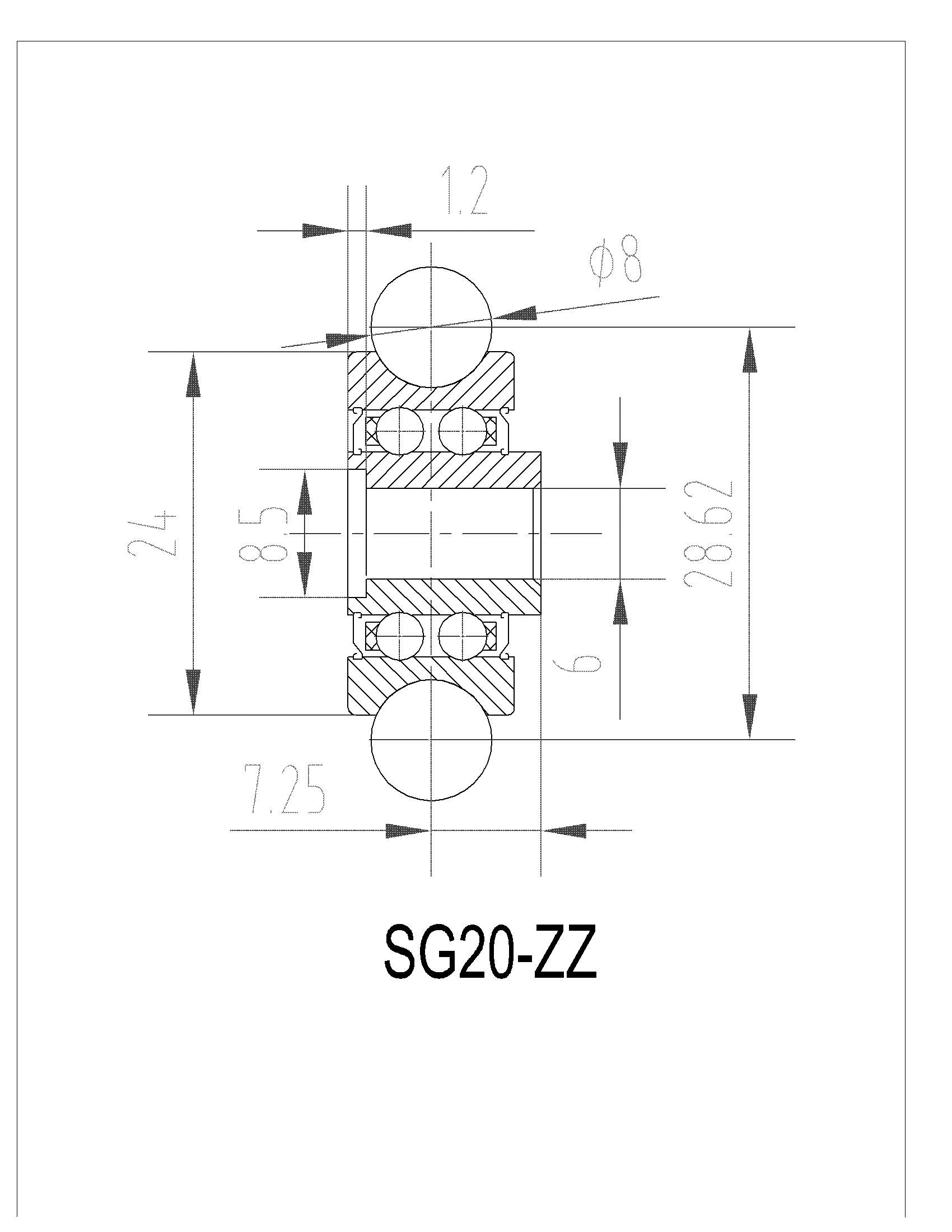 Rodamiento De Rodillos De La Pista Sg20zz Rodamiento