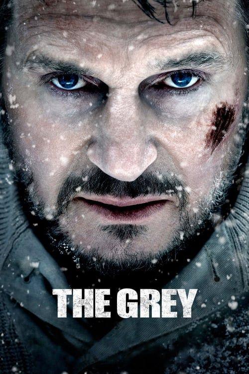 Key visual ofThe Grey