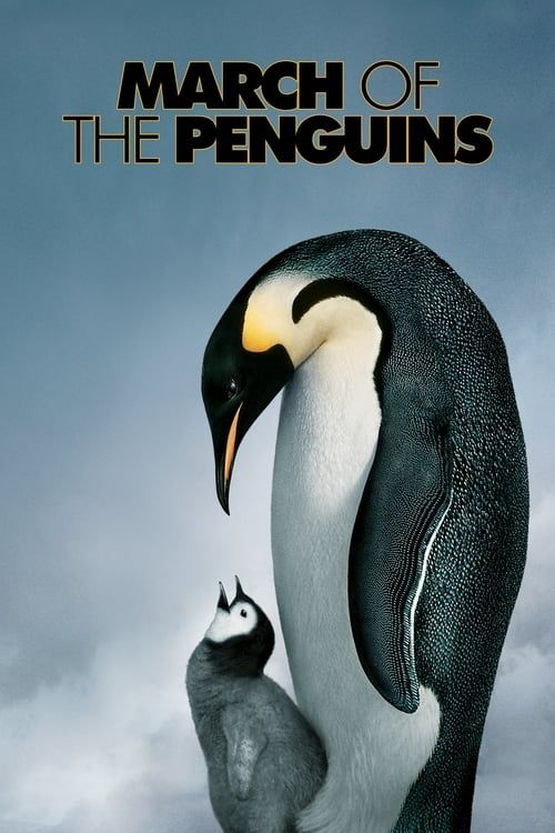 Key visual ofMarch of the Penguins