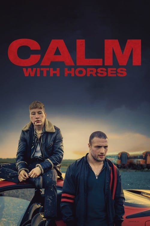 Key visual ofCalm with Horses