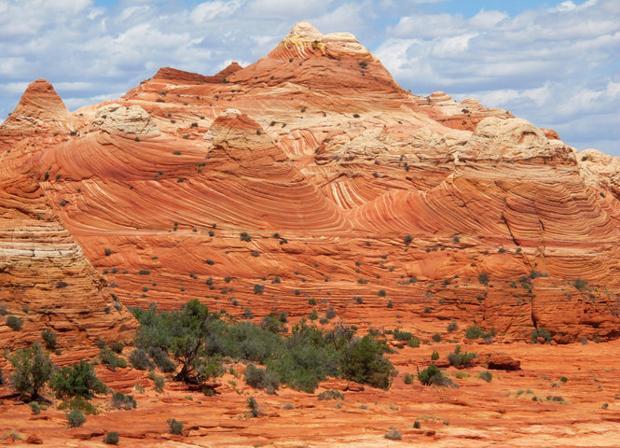 Travel To Visit The Wave At Arizonas Vermilion Cliffs