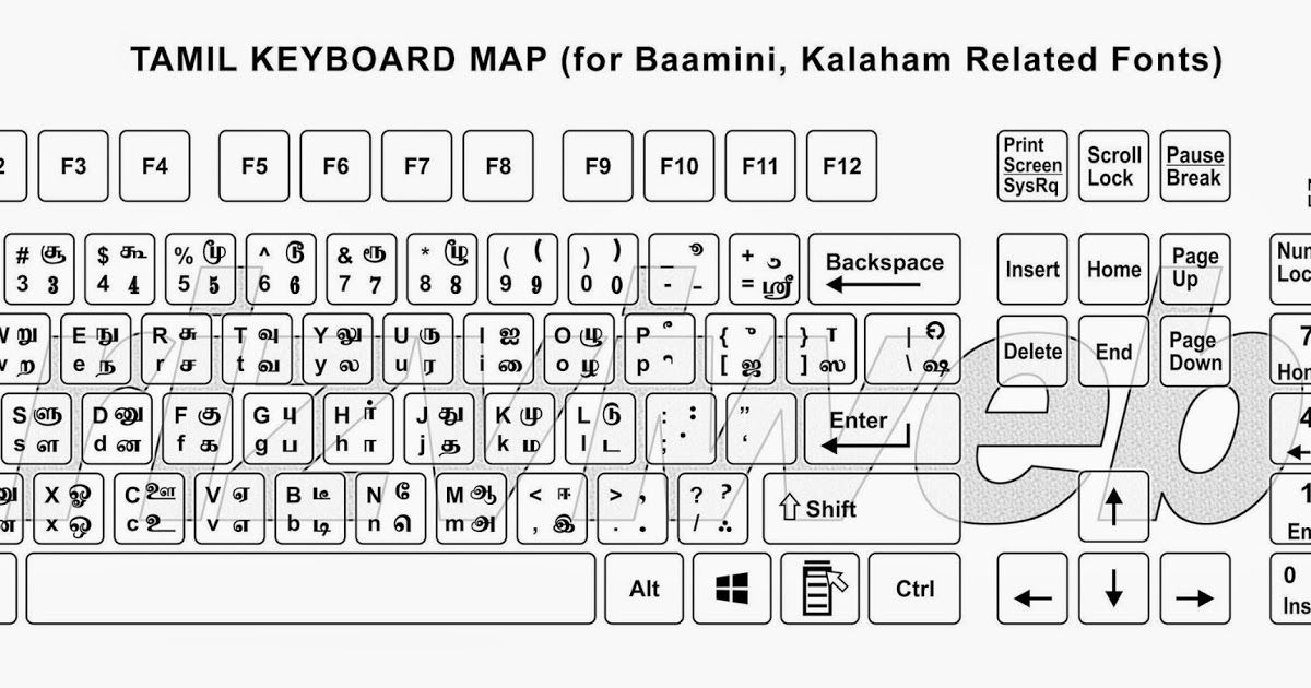 You done all thing now go to ms word select tamil font from drop. Free Download Bamini Tamil Font Ttf Http Oghbtz Over Blog Com