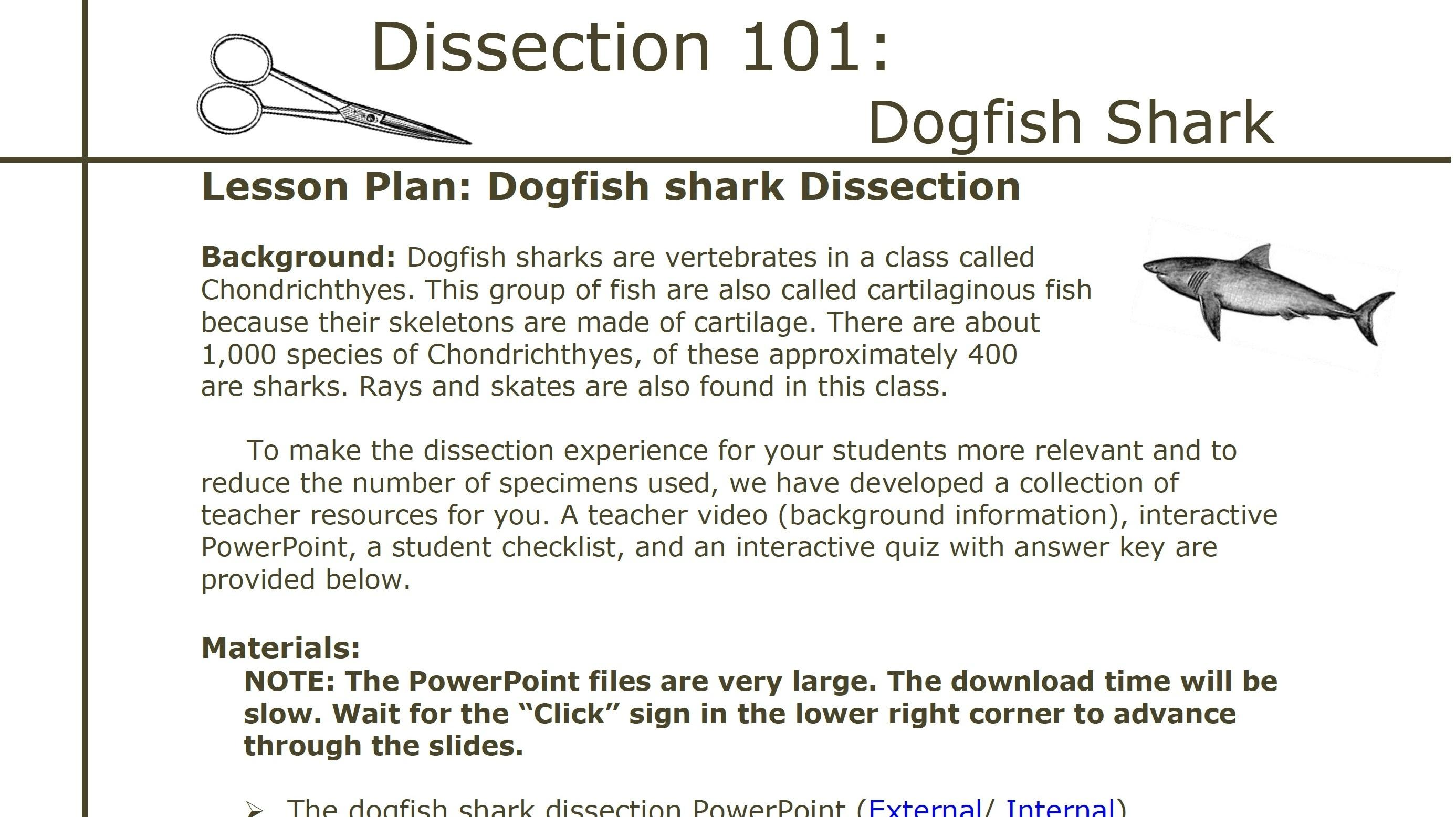 Dissection 101