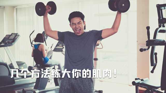 全身焕活系列,提高肌肉耐力