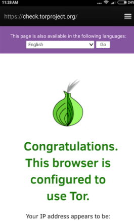 Successful Tor Connection on Android