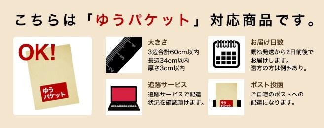 ドッグウェア☆ クラシックカー ワッペン フードジャケット パーカー 【秋冬にぴったり暖かウェア♪】