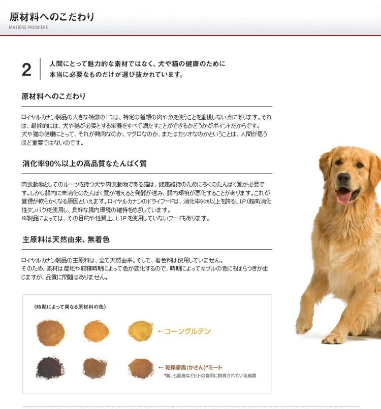 ロイヤルカナン 8歳以上の大型犬 高齢犬用 マキシエイジング 8+15kg【送料無料】