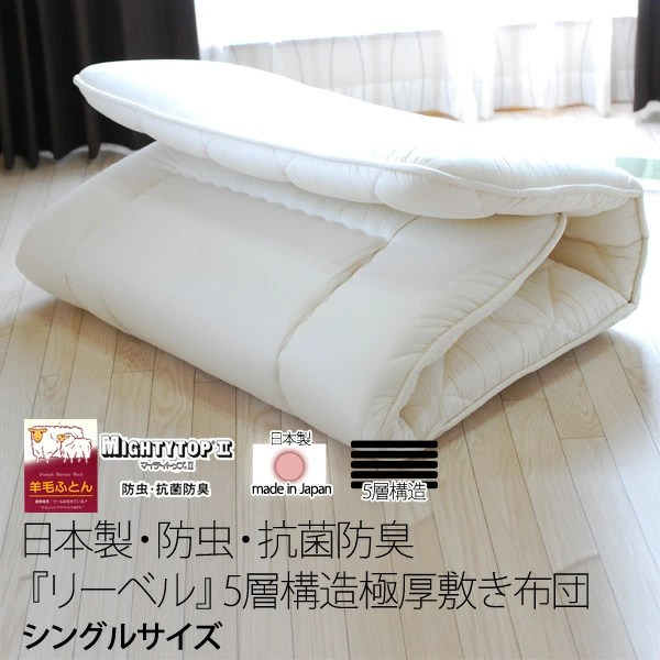 Anese Floor Rolling Futon Mattress Ourcozycatcottage